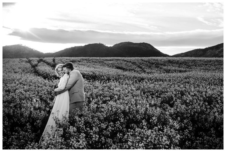 a black and white photo of the wedding couple snuggling in the canola field