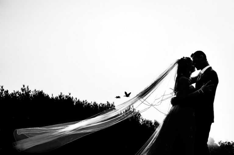 a fine art photo of the bride and groom kissing