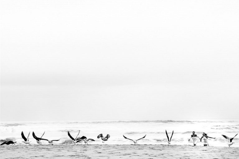 an engagement photo of the engaged couple with seagulls
