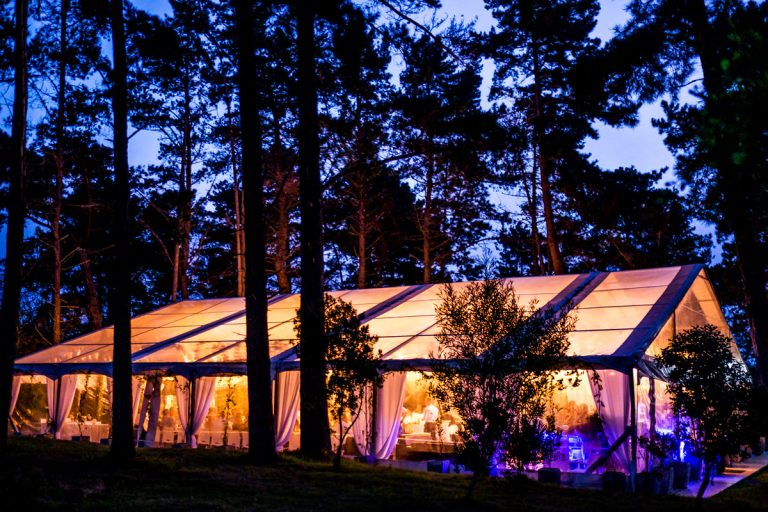 the stunning Mizumi Forest Estate Wedding venue at night