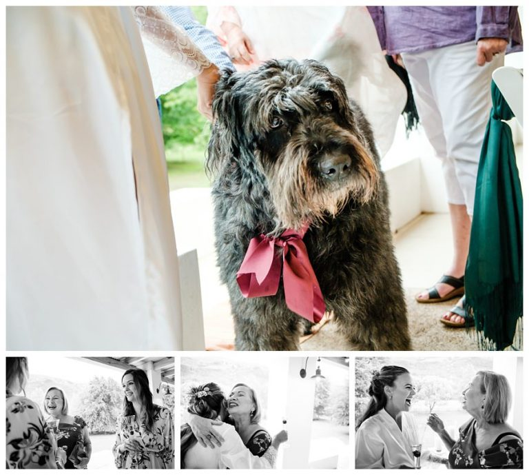 the bride's childhood dog on her wedding day
