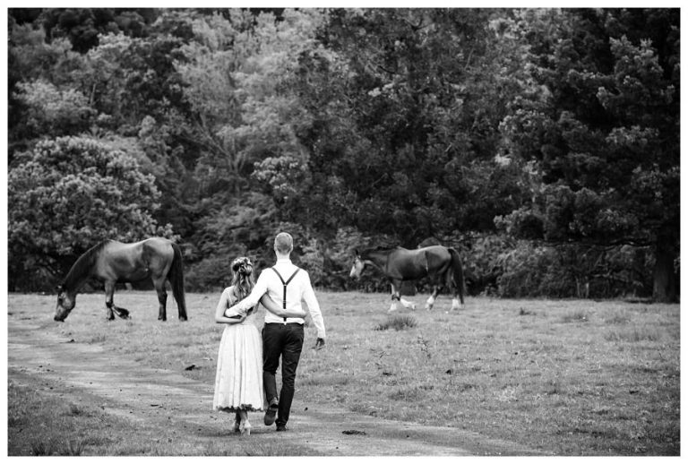 the bride and groom walking in the farmlands with horses