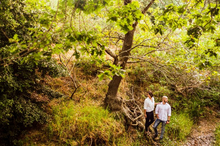 beautiful greenery for this couple photo