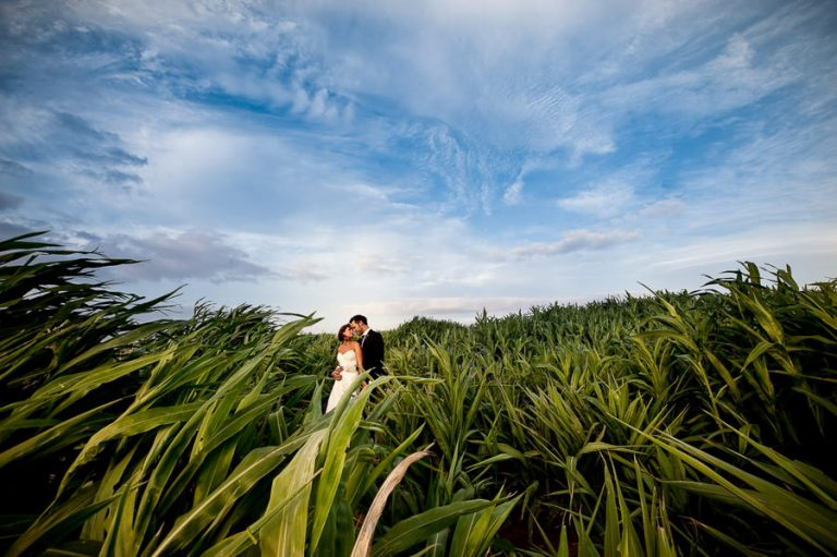 Beautiful Wedding Photos by Christelle Rall like this classic wedding portrait of the bride and groom standing in a field of sugar cane. The image has a creative touch.