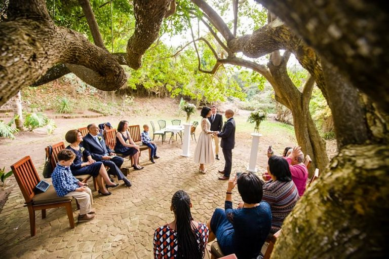 Intimate Wilderness Wedding under an ancient old tree